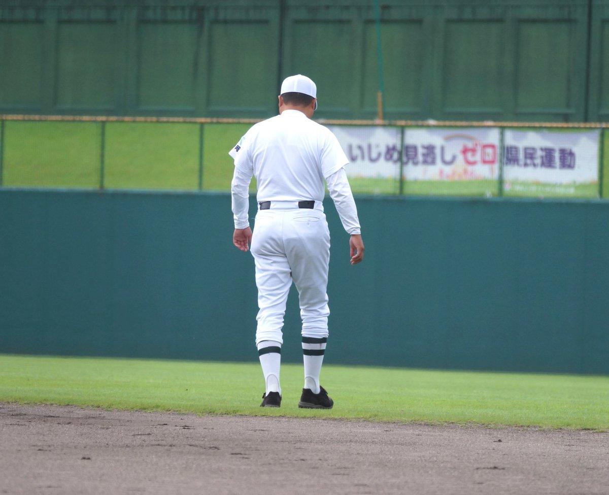 新潟 野球 ドット コム
