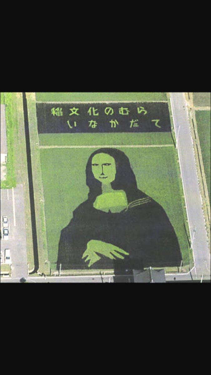 田舎館村の田んぼアート見てきたけど、13年前の素人が復元したモナリザみたいな田んぼアートから目覚ましい進歩を遂げてた https://t.co/IKQYFQRgSU