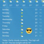 Sunny forecast for Brighton for the whole week ahead