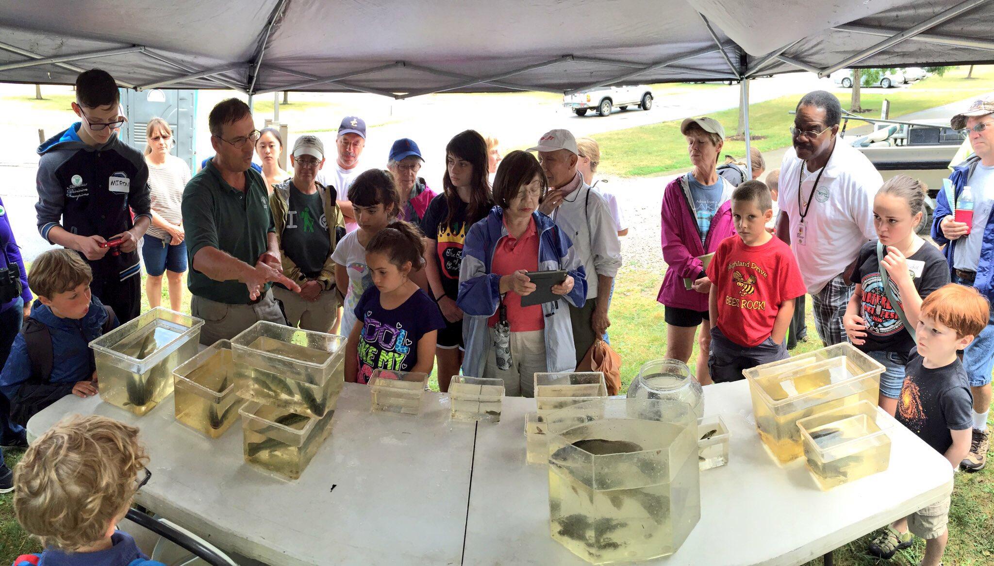 Final stop, Euclid Creek, learning about #electrofishing and taking a wetland restoration tour! #DITLeuclidcreek https://t.co/TNRKYfYKA7