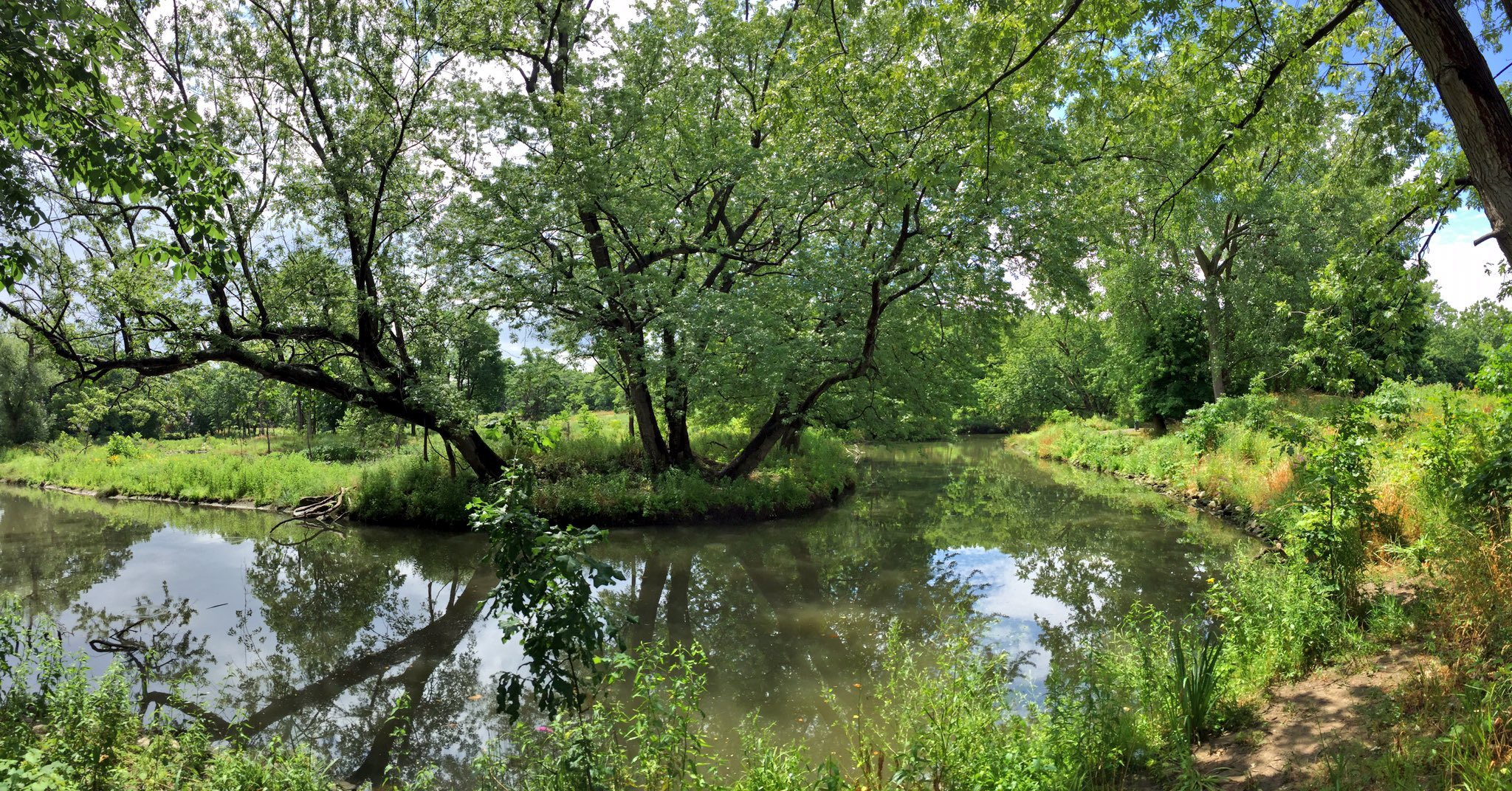 Learning with a view. A well spent Saturday... 🌳💦 #DITLeuclidcreek https://t.co/ej9xoIKZvO