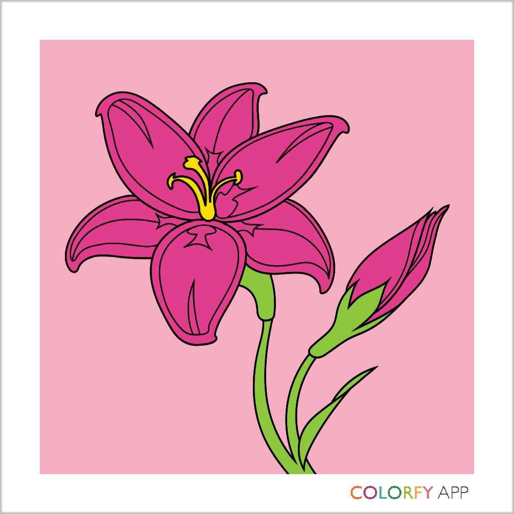 Colorfy plus coloring book -  Colorfy Painteditmyself Coloringbook Cute Beautiful Lovepic Twitter Com Nkumg7etyv