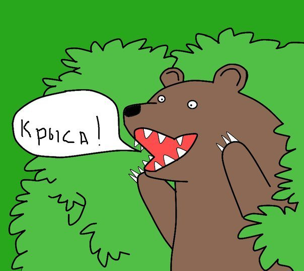 медведь шлюха картинка