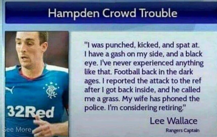 Image result for lee wallace hampden sky sports