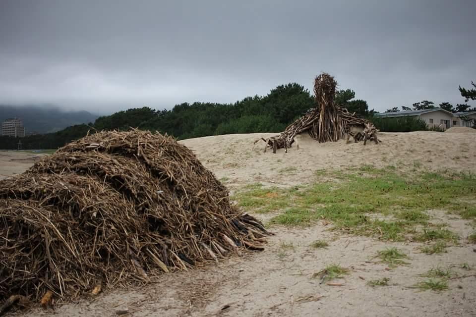 海岸の漂着ゴミで作られた王蟲と巨神兵のクオリティ高すぎwでもゴミですwww