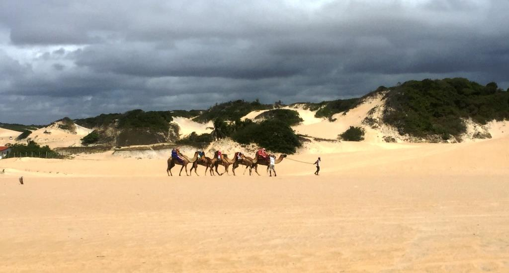 03a3c6e046 Que tal um passeio pelas dunas de Genipabu