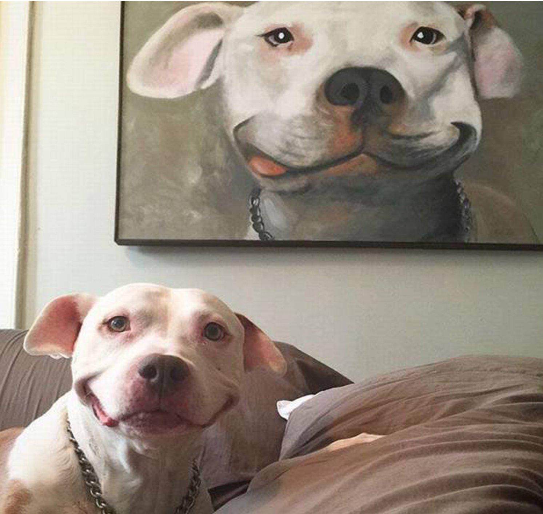 imágenes de sonrisas