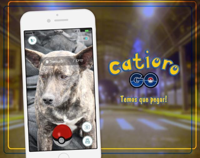 Prefeitura de Esteio cria a campanha Catioro Go! para estimular adoção de cães abandonados https://t.co/ypIX98bhk1