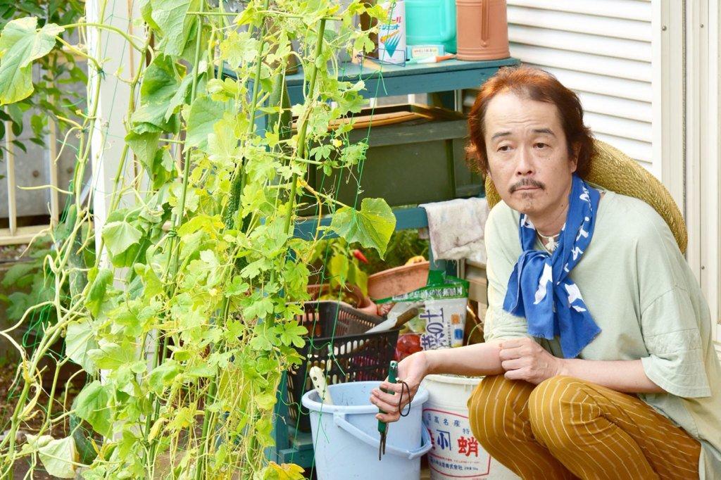 家庭菜園のリリーフランキー