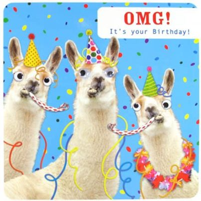 Thefingersofgod Loves Llamas Send Her A Birthday Llama
