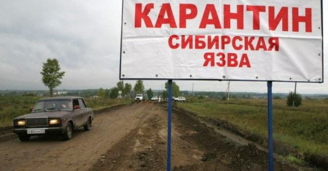 В оккупированном Симферополе неизвестные штурмовали офис адвокатов крымских татар - Цензор.НЕТ 7089