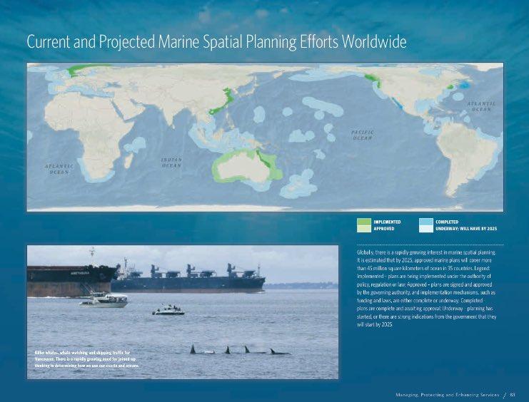 marine spatial planning dissertation