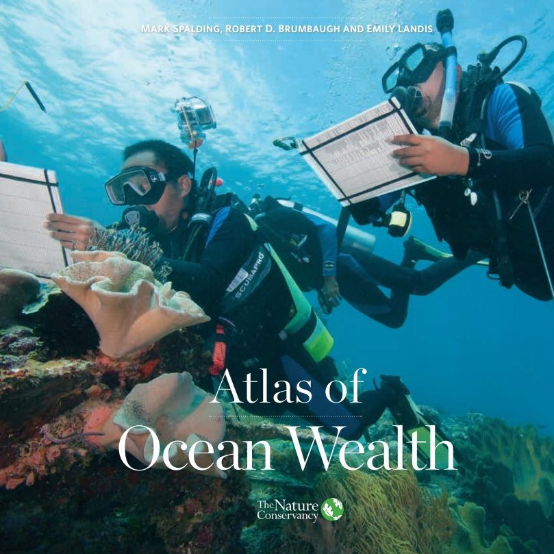 """""""Atlas of Ocean Wealth"""" maps the benefits of #ocean ecosystems https://t.co/p9dziheYPf @nature_org @Esri @NOAA #GIS https://t.co/dfcIY3DCBG"""