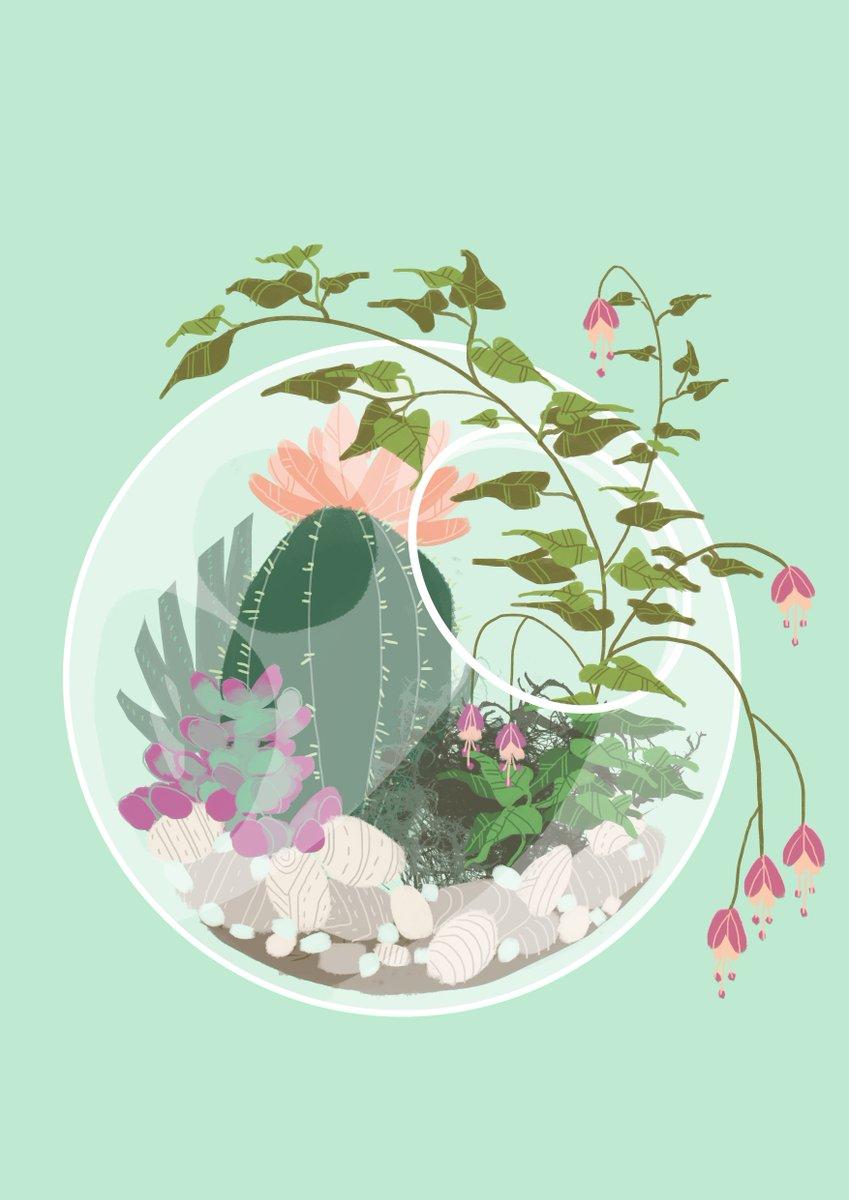 Jess Taylor On Twitter The Fourth Terrarium Aesthetic Plants Decor Digitalart Illustration