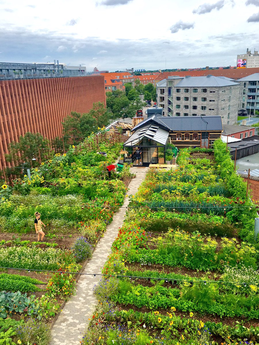 Urban Garden Urban Farming Rooftop Garden Urban farming backyard garden