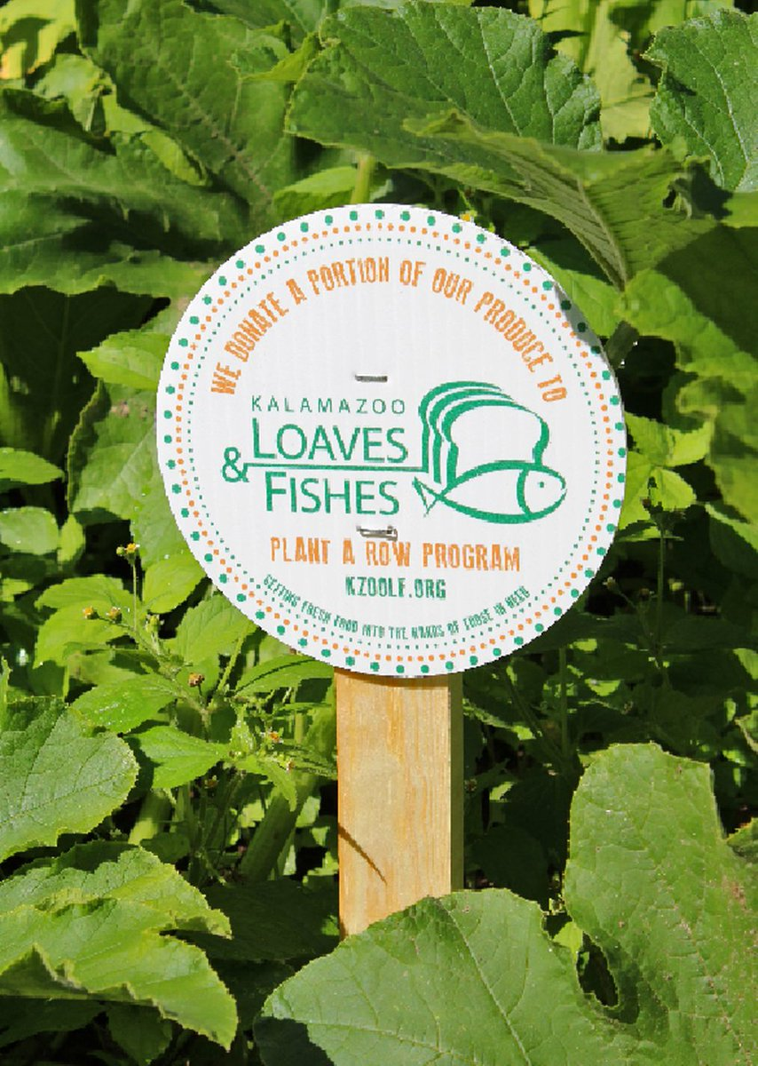 Kzoo loaves fishes kzoloavesfishes twitter for Loaves and fishes kalamazoo