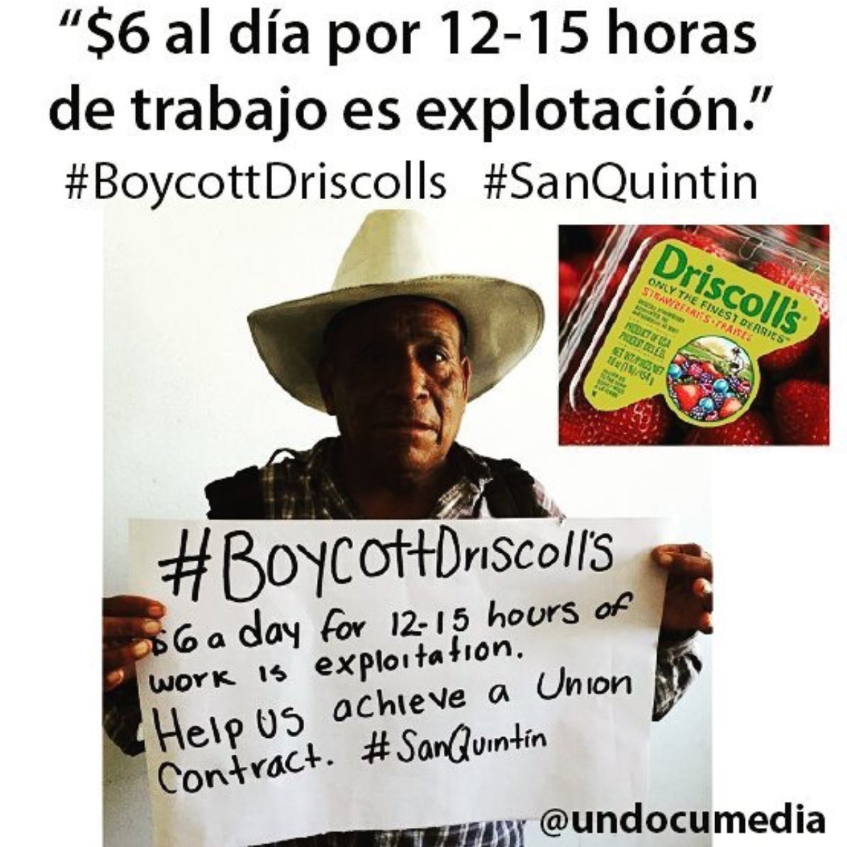 #BoycottDriscolls I HAVE FAMILY IN SQ AND THEY SAY THAT THE WORKERS DON'T GET FOOD,WATER, OR BATHROOM BREAKS https://t.co/9O0rZWt2q2