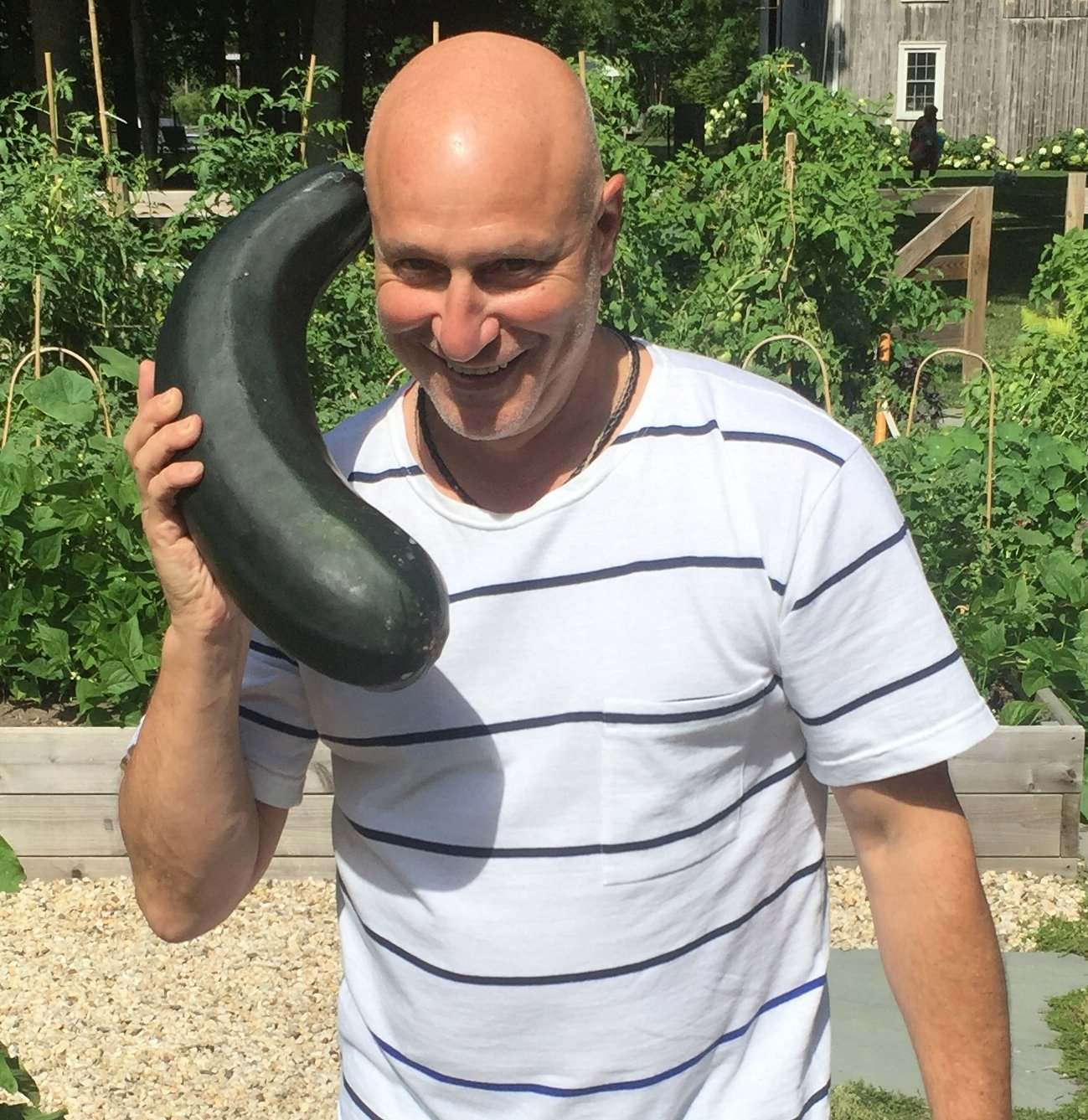 "Tom Colicchio On Twitter: ""Hello...it's Me, Zucchini! If"