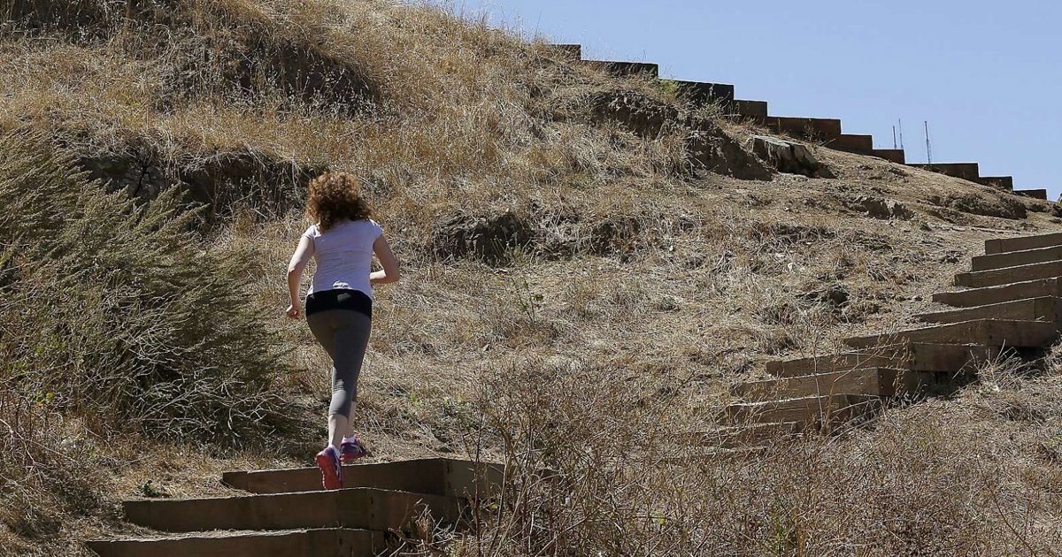 New trail opens SF's Billy Goat Hill to grateful neighbors. via @LizzieJohnsonnn
