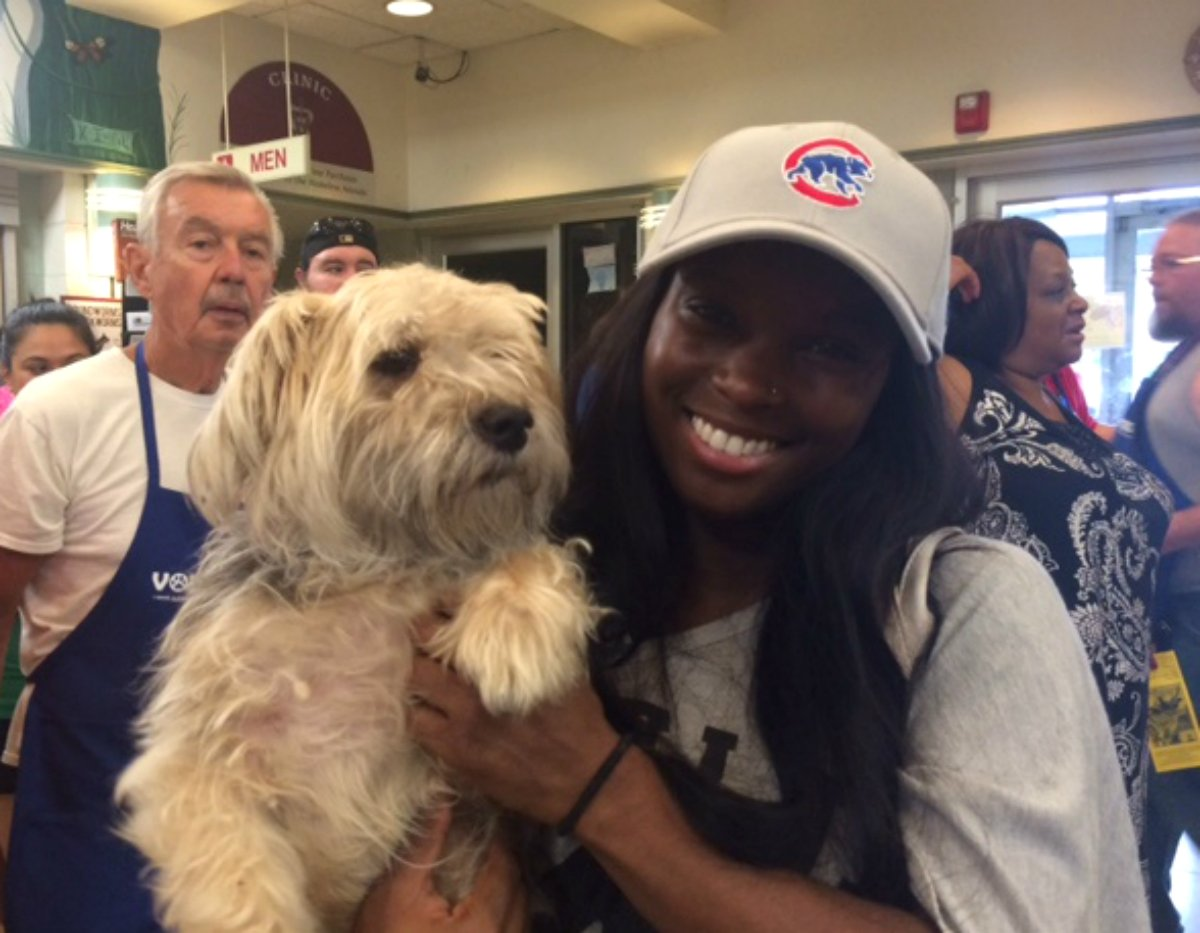 Olivia of Chicago found Jasper at ClearTheShelters and he's