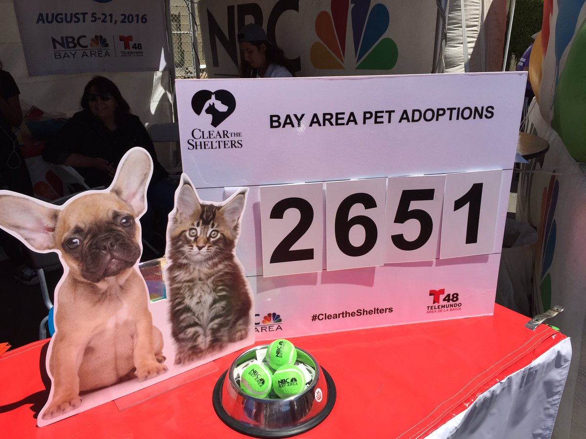 Only 2pm and 2,651 Bay Area pets have new homes! cleartheshelters @berkeleyhumane