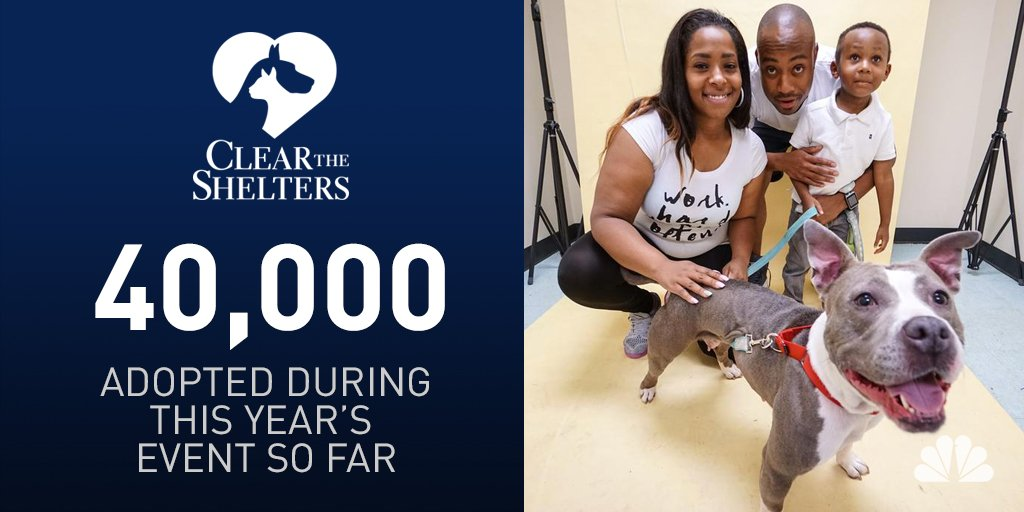 40,000 pets have found their homes during ClearTheShelters across the country!
