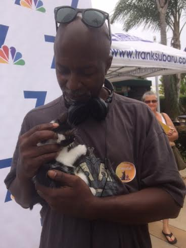 Hundreds of animals found new homes today in San Diego as part of CleartheShelters. PHOTOS