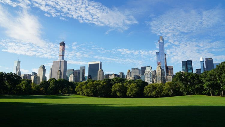 24 wonderful photos of Central Park in the summer