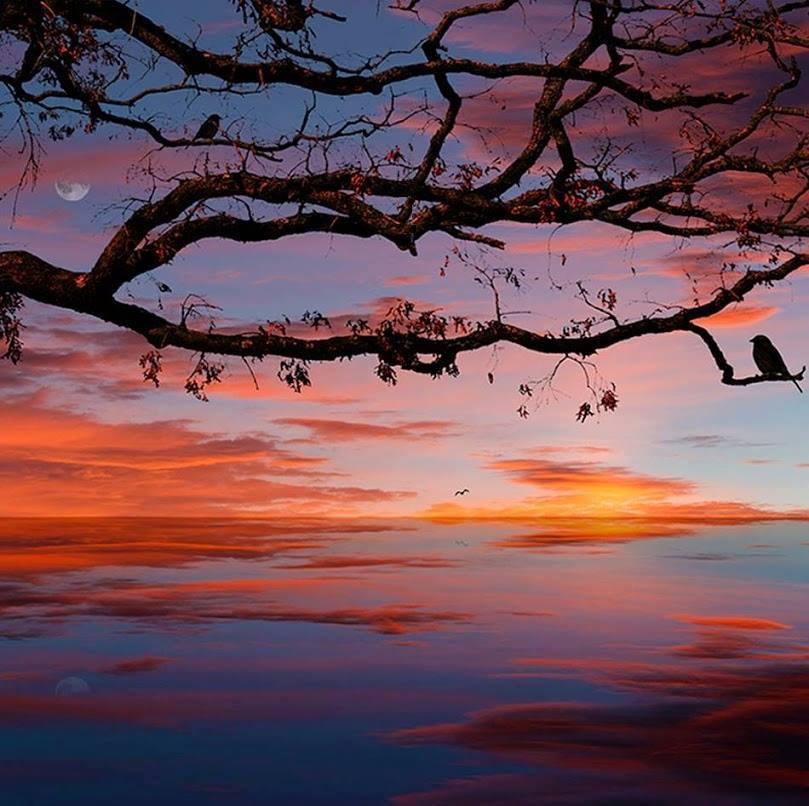 Le jour doucement part vers d'autres contrées..... Sans aucun remords de nous abandonner....           Belle soirée