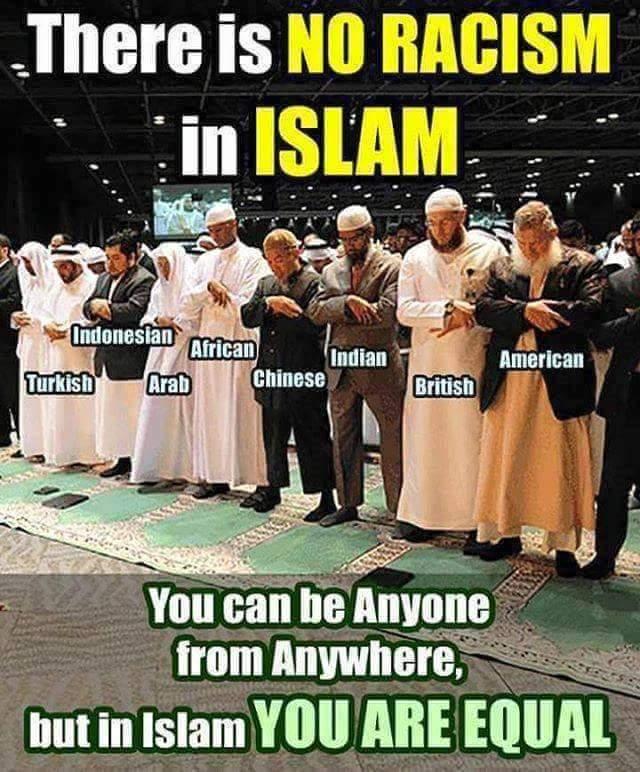 Fuck You Islam