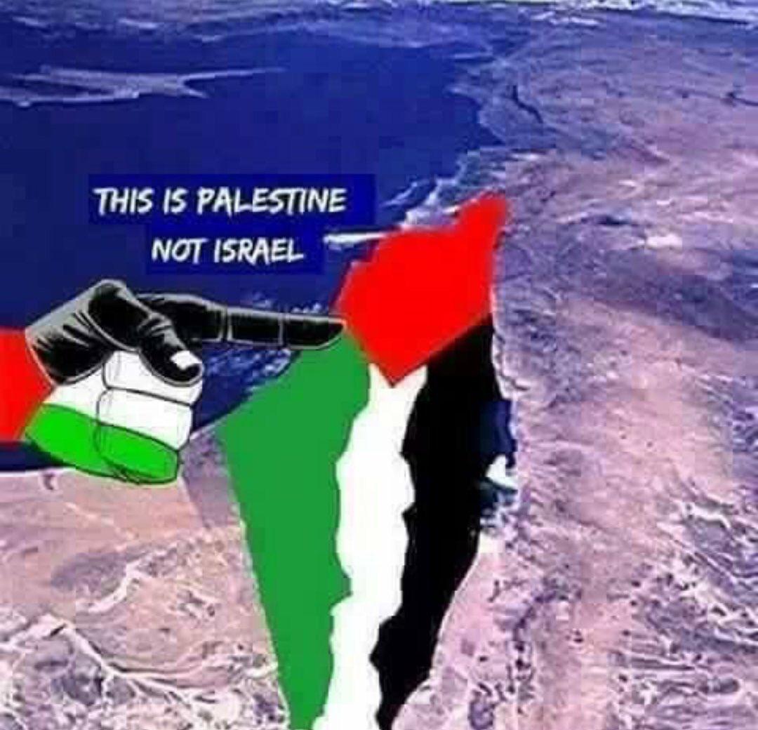 Afbeeldingsresultaat voor this is palestine