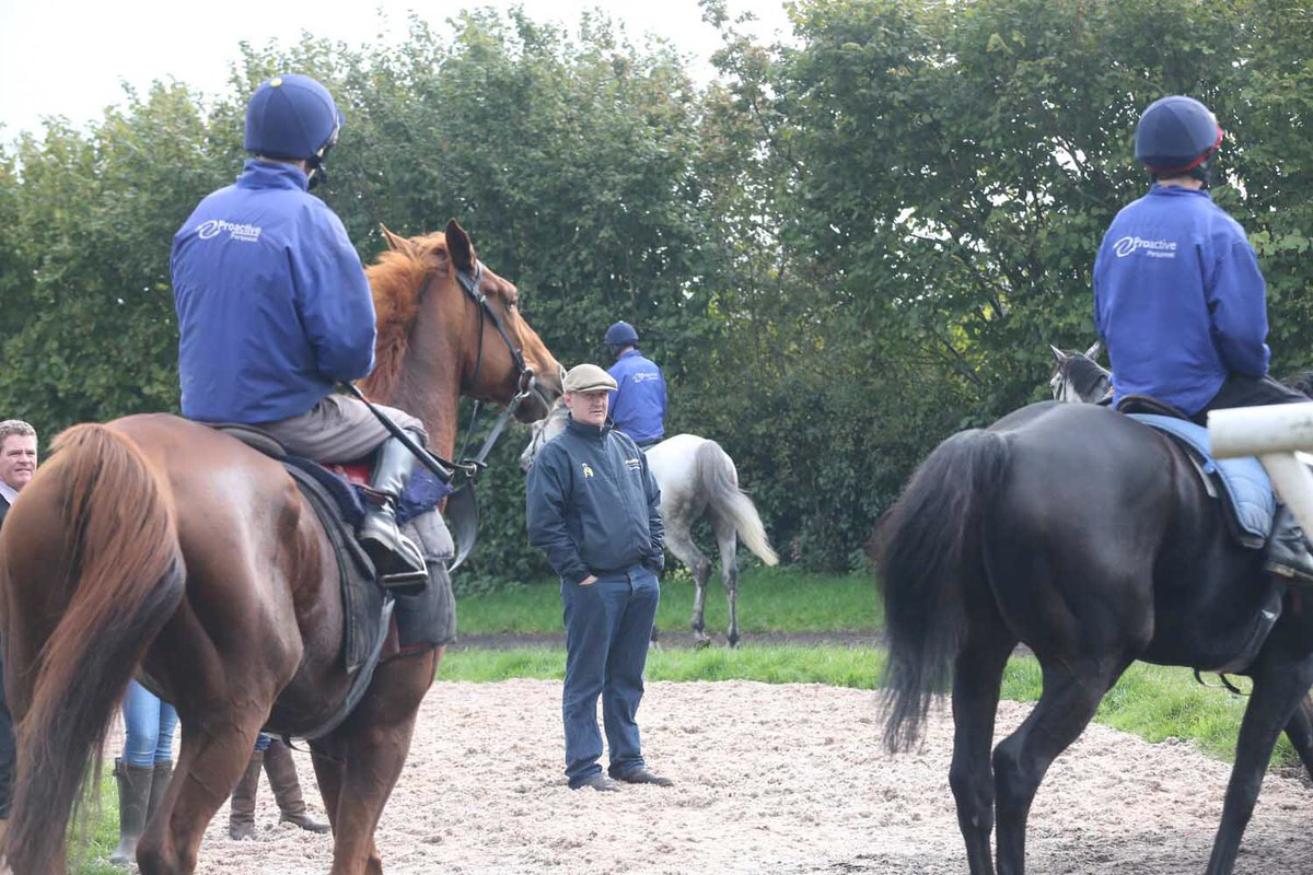 Stable Staff/Work Rider required to join @donaldmccain, Cheshire.  Interested? Please visit: https://t.co/HVB6dPtskK https://t.co/ZokVJULFpq
