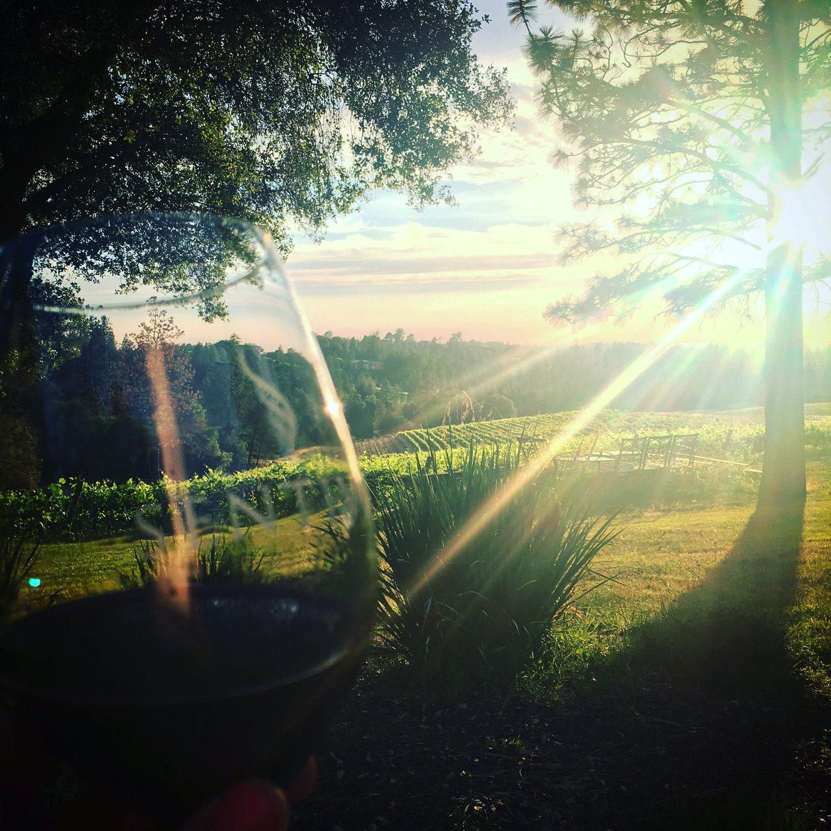 Sentivo winery