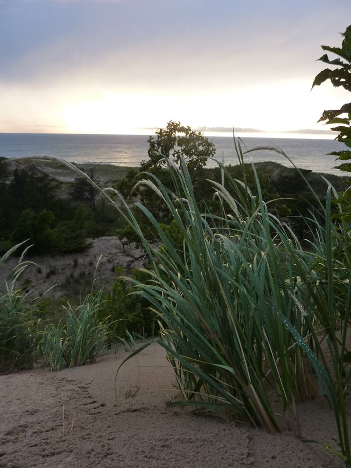 ...and he showed me Nordhouse Dunes Wilderness on Lake Michigan. View from our campsite: https://t.co/G4JF3xjAho