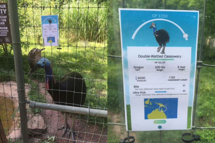 Zoo animals given Pokemon GO personas to encourage people to look up: https://t.co/YBgWXccnWC #ZookeeperProblems https://t.co/94x1JsRdTV