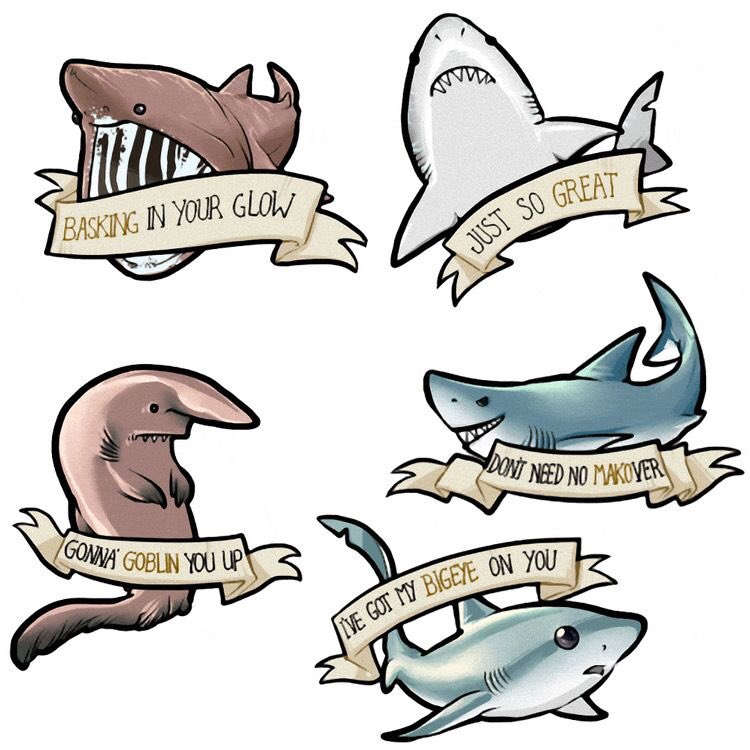 Shark pick up lines