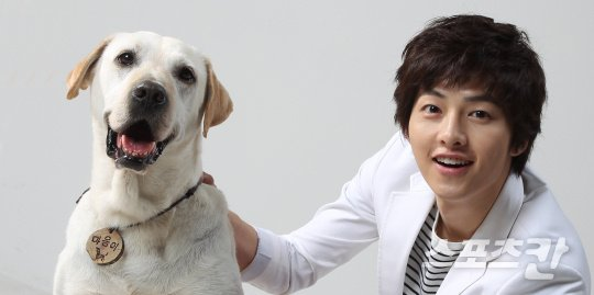 hearty paws 2 download eng sub