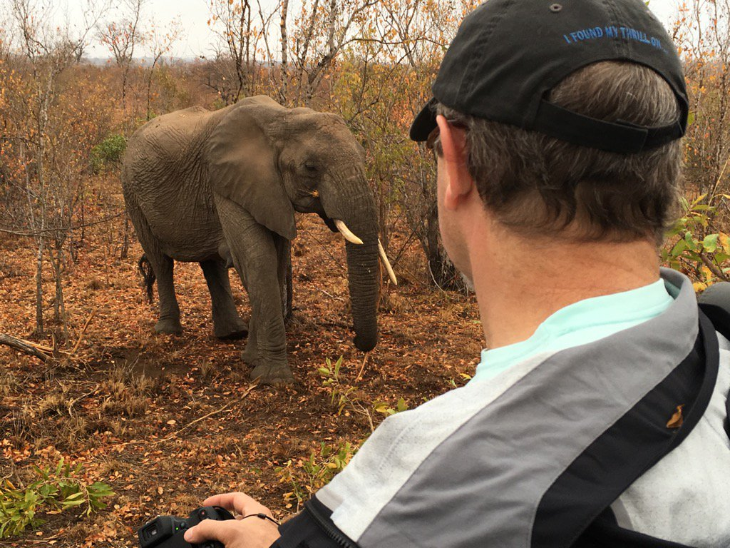 This morning, up close and personal with #Elephants Such fun! @sabisandsGR @DuliniLodge https://t.co/fAr1kELNxT