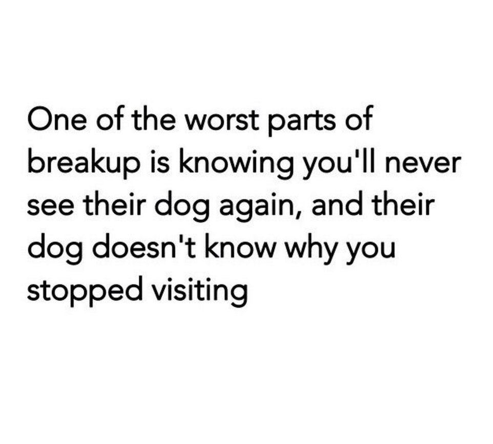 #ABreakUpIsBadWhen a dog is involved! Easily the hardest part of any breakup https://t.co/Jdr5GCphJB