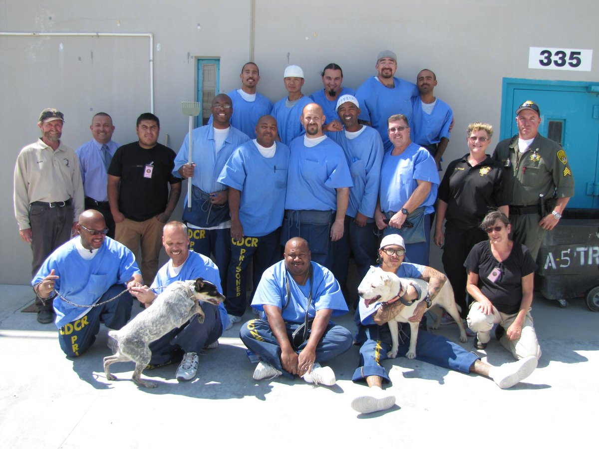 Lancaster prison hosts deaf dogs evacuated from Sand fire area