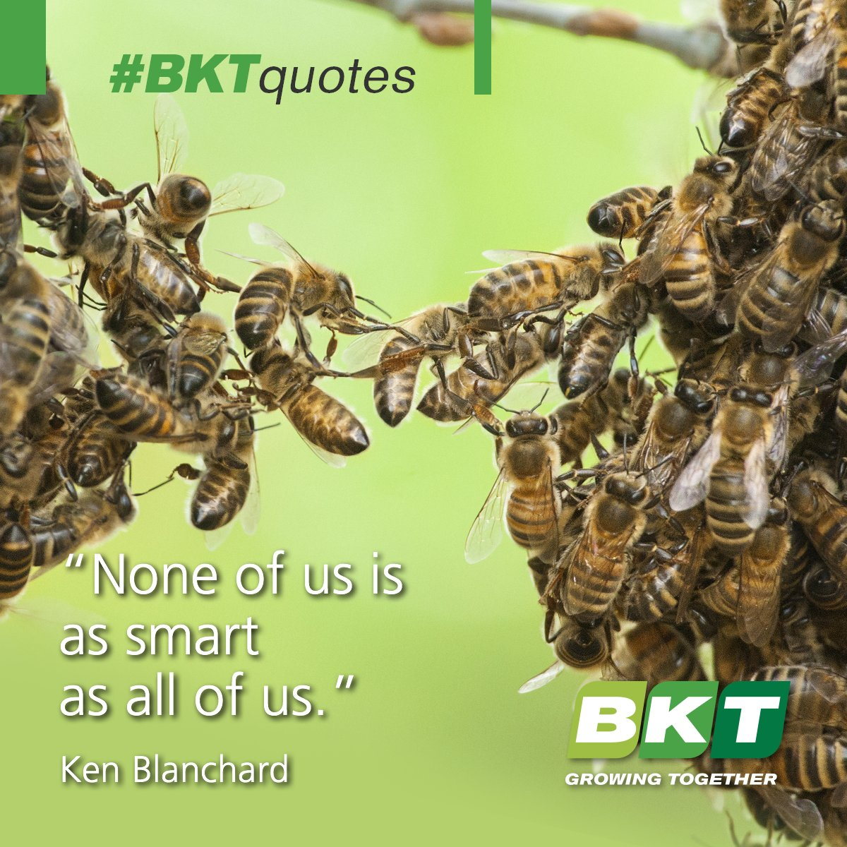#GrowingTogether, Achieving More. #BKTquotes #quote #quoteoftheday https://t.co/IzW4jL2w8I