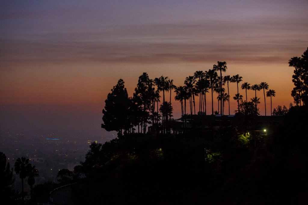 How many trees are in Los Angeles? Ask Google.