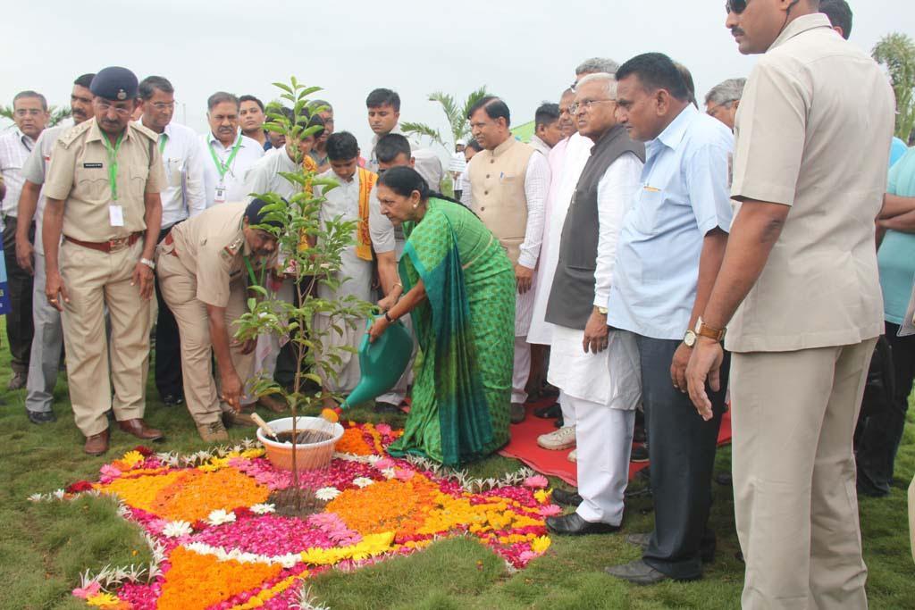 Gujarat CM dedicates Mahisagar forest being developed by Forest department