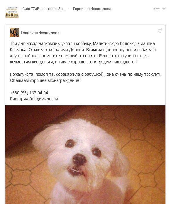 Путин досрочно уволил Меняйло с поста губернатора оккупированного РФ Севастополя и отправил его в Сибирь - Цензор.НЕТ 2564