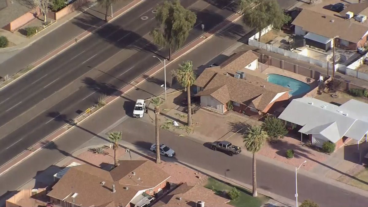 Fatal fall: Man killed after falling 30 feet out of palm tree near 35th Ave. & Glendale