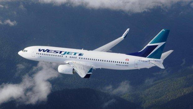 WestJet finds pet gecko that was lost on Toronto-Vancouver flight