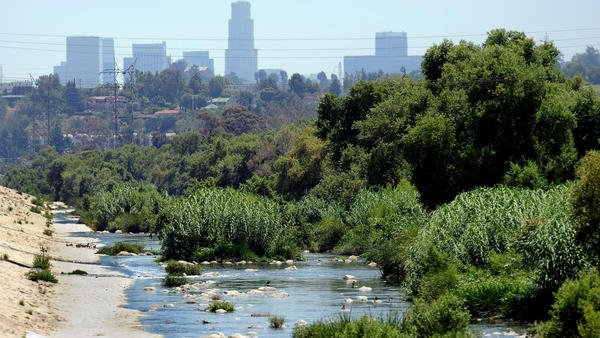 There's fecal bacteria in the L.A. River