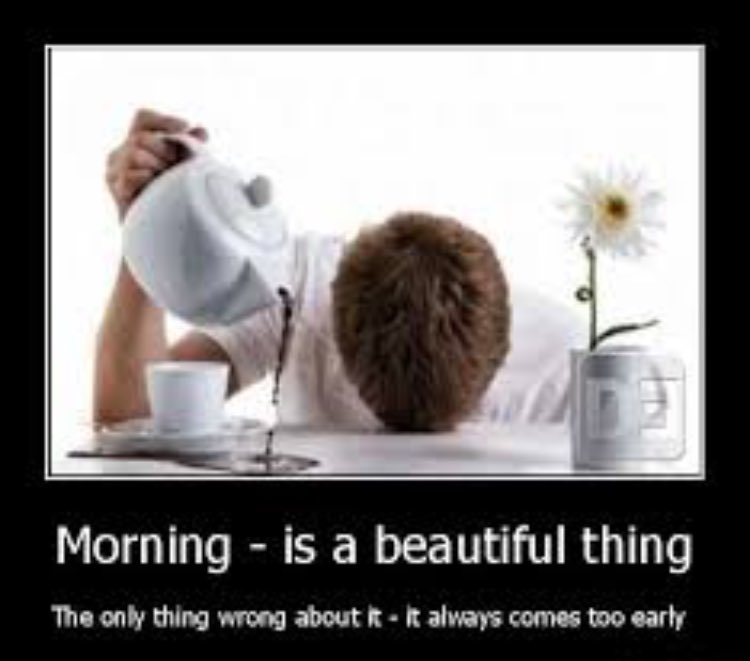 """Morning! 😩 (Phone just tried to auto correct that to """"Me Ending"""" .... Interesting🤔) https://t.co/Fic0Q4jKlD"""