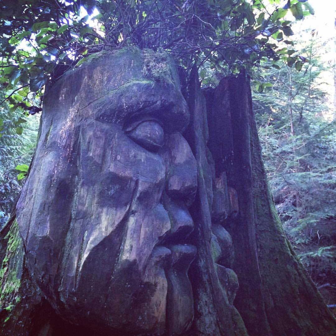 Have you ever happened upon the #HiddenMan of #StanleyPark? #yvr #Vancouver #ExploreBC #hiddenart https://t.co/6FcR3LkJ29