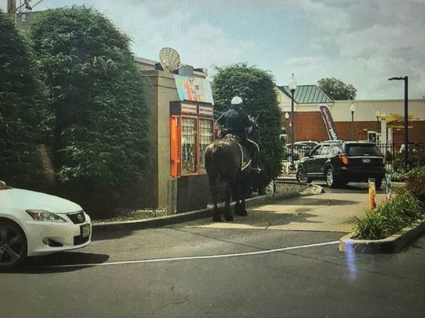 Coffee and 1 glazed Munchkin for my horse: Mounted officer makes Dunkin' run